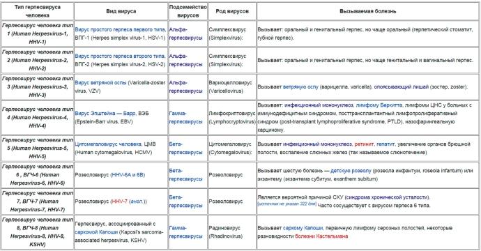 8 типов герпеса